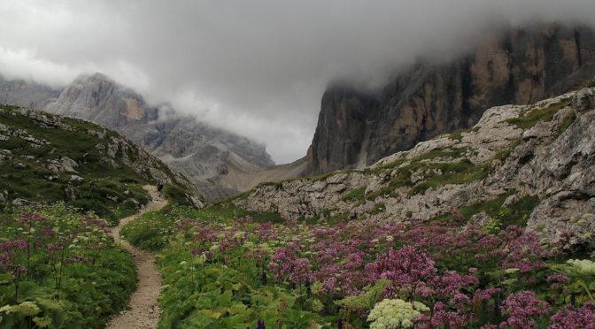 Wanderung Zsigmondyhütte 2015